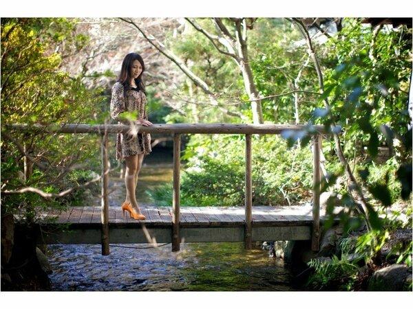 庭園の小川にかかる橋