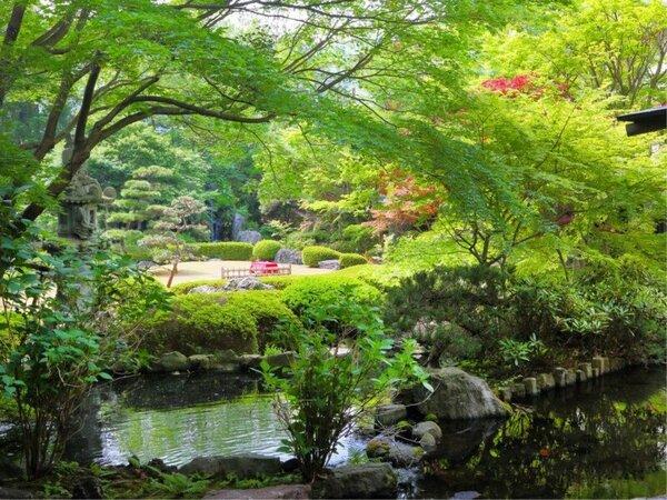 春夏の日本庭園 爽やかな緑と涼しげな水辺が綺麗な春夏の庭園