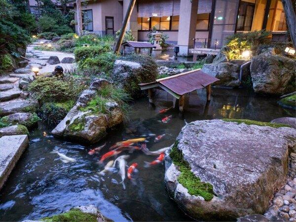 日本庭園をみながら、ほっと一息