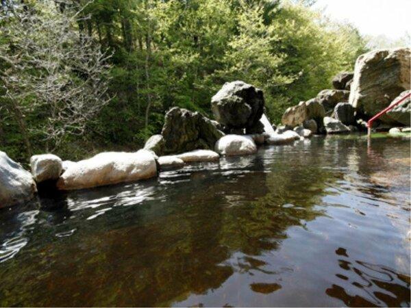 珍しい植物性天然モール温泉を是非お楽しみください。源泉100%かけ流しです。
