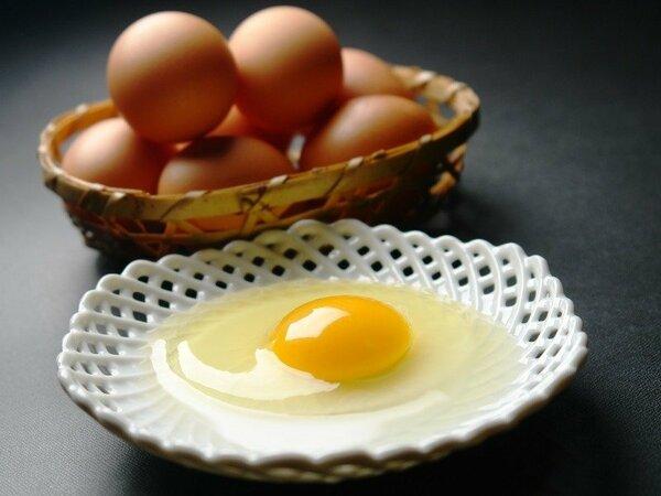 朝食にもこだわりのお料理をご用意。なかでも下呂産鶏の庭先玉子で作られた出汁巻き玉子がおすすめです。