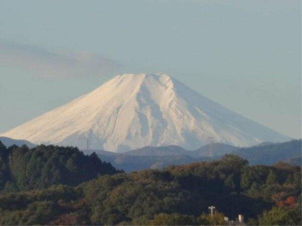 天気がよければ南側のお部屋から富士山がご覧いただける眺めの良いお部屋もございます