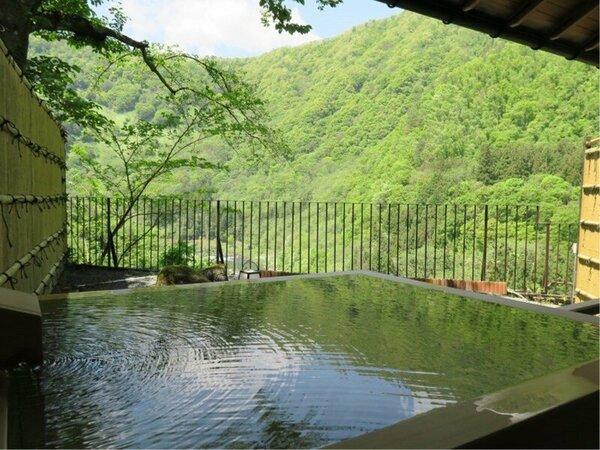 露天風呂付客室(和室)からの渓谷の眺め